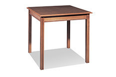 Activity / Dining Table